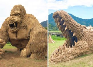 Japanese Students Making With Straw Monster Animals That Can Scare You