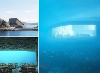 This Underwater Restaurant in Europe Is Amazing For A Special Dinner