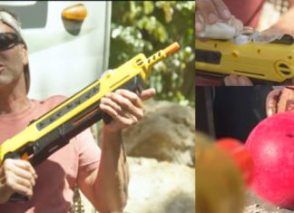 This Salt Firing Shotgun Eliminates Flies In Seconds