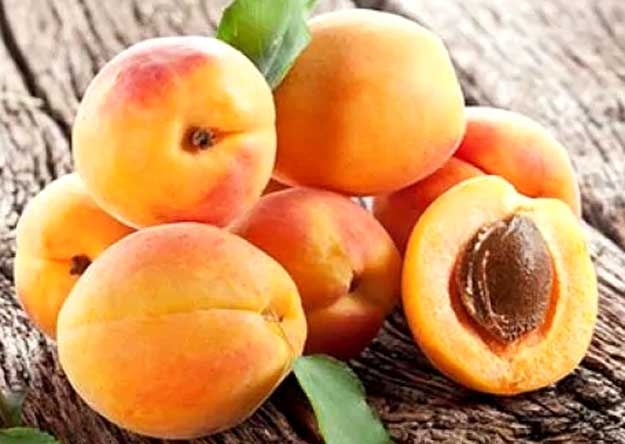 Can you eat apricot seeds?