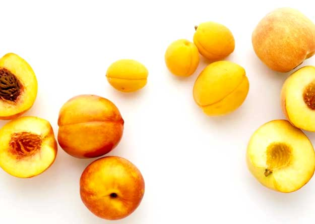 What is the difference between peach and apricot