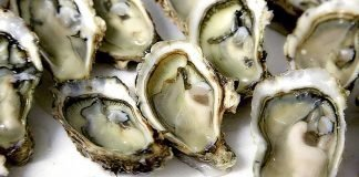 Aphrodisiac Foods That Stimulate Sexuality