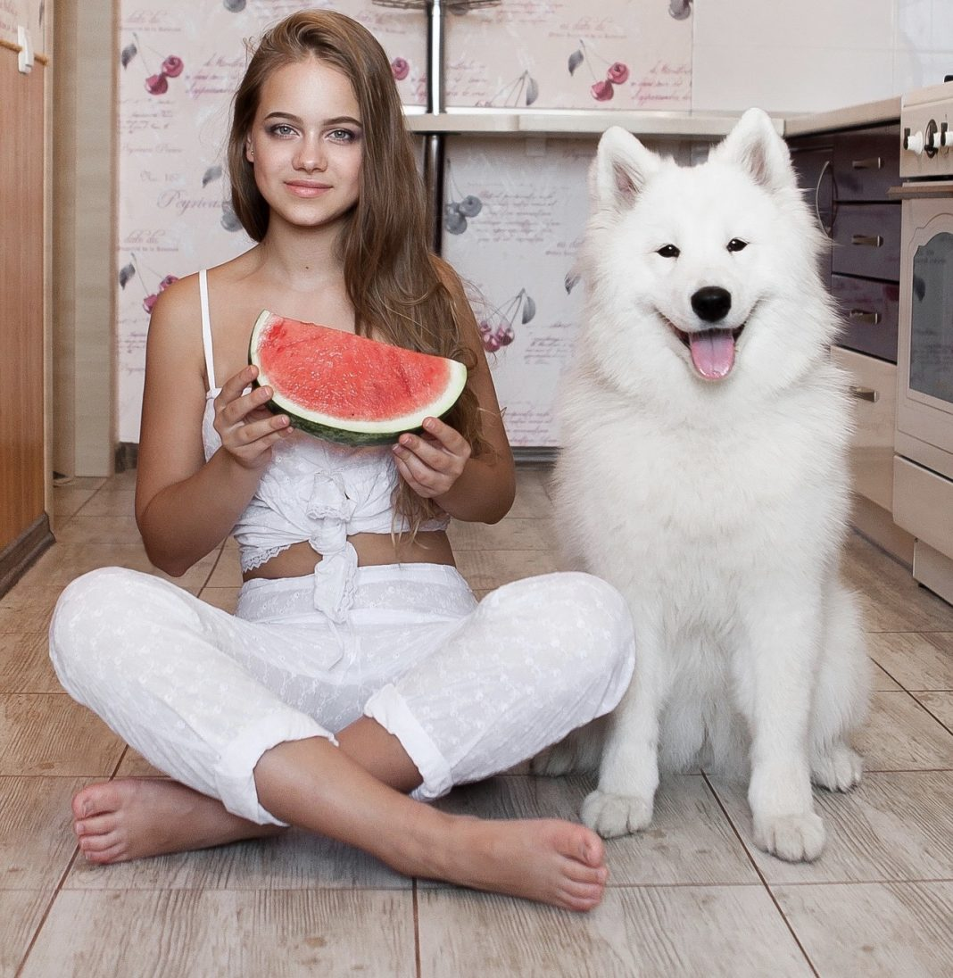 Is watermelon good for dogs?
