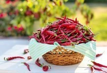 Important Benefits Of Cayenne Pepper