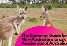 The Dummies' Guide for Non-Australians to ask Aussies about Australia