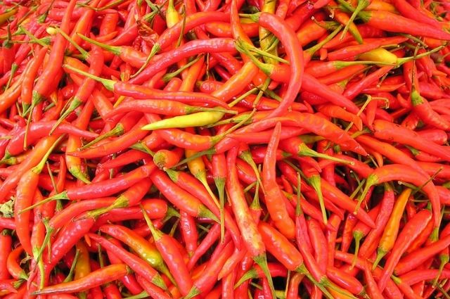 Full of red chilis in a image.