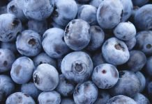 Blueberries Benefits and Side Effects