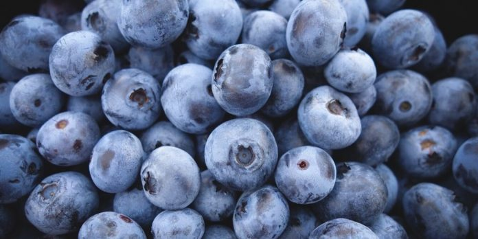 Blueberries Benefits and Side Effects - Healthy or Unhealthy?