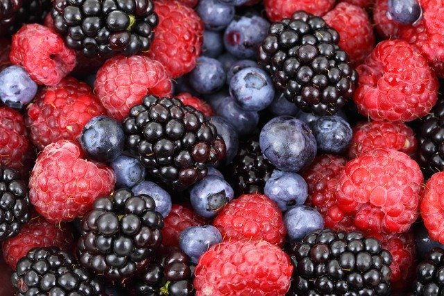 Berry fruits food for vegans