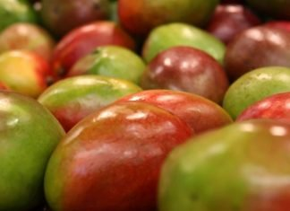 Mangoes benefits and side effects
