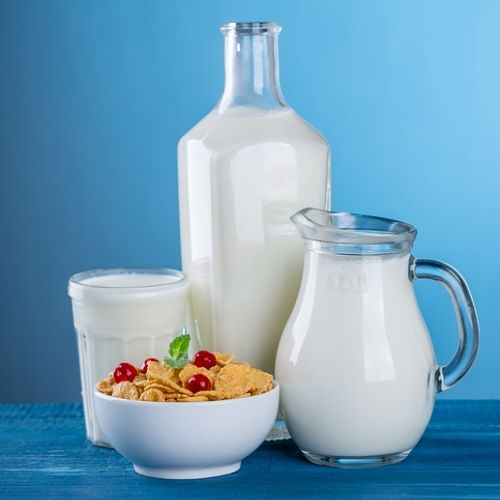 Dairy Products are Healthy Foods for Losing Weight