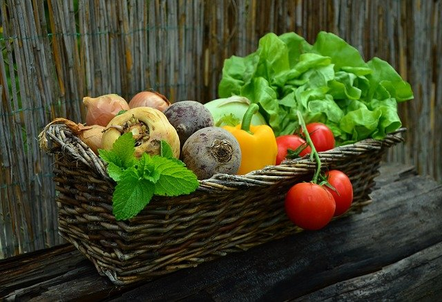 Vegetables are Healthy Foods for Losing Weight
