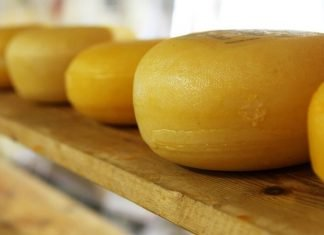 You can freeze cheese, but the variety decides