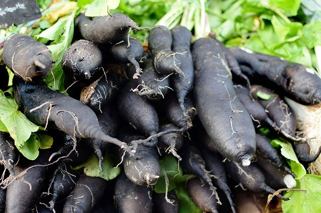 Black salsify is rich in iron.