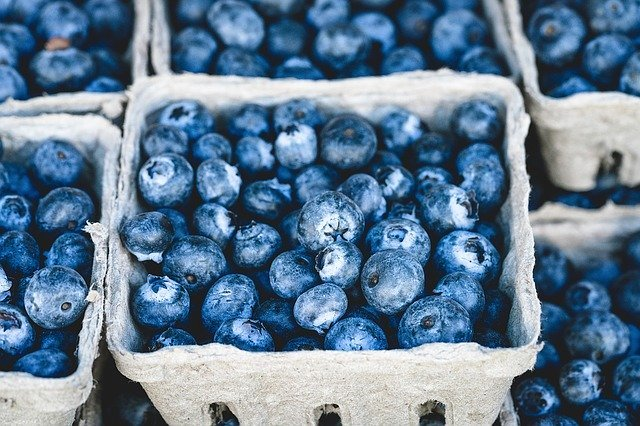 Fresh fruits are foods high in fiber content.