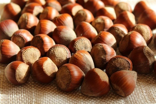 Hazelnuts are rich in calcium content.