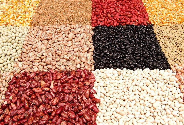 Legumes are a portion of food with high iron content.