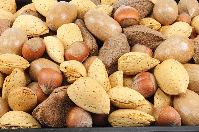 Nuts are foods high in fiber content.