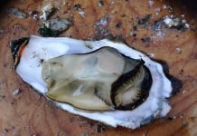 Oysters Food is high in zinc.