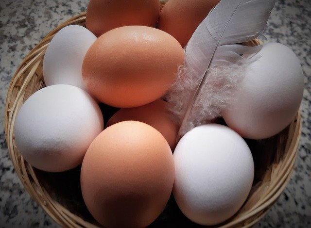Chicken egg is high in amino acids