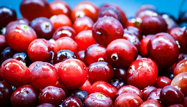 Cranberries Benefits for Face