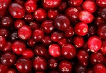 Cranberries Benefits for Health