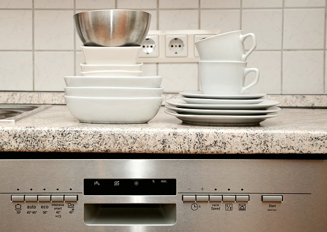 How to prepare the dishwasher for descaling