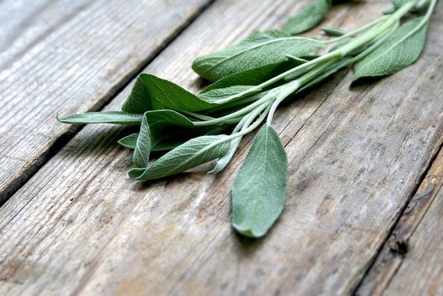 Drying and using sage