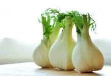 How To Cut A Fennel Bulb?