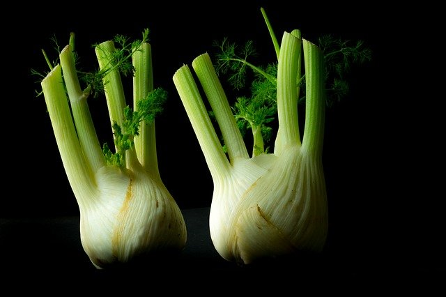 What you have to pay attention to when buying a fennel?