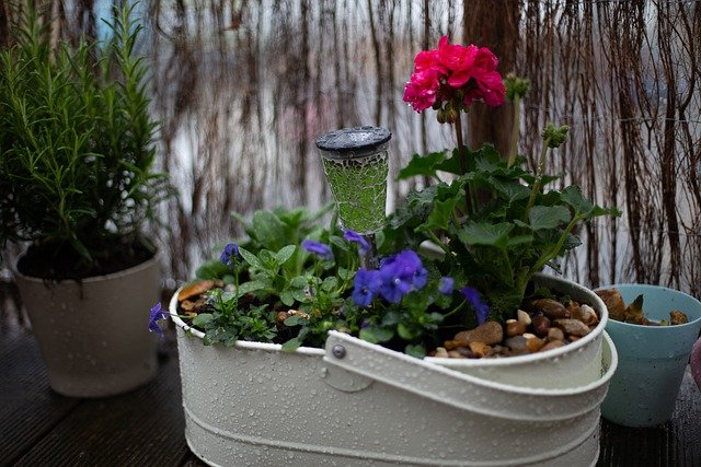 Balcony flower boxes and potting soil for proper planting