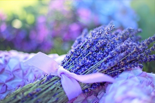 Aromatherapy Effects And Applications Explained Best In 3 Steps!